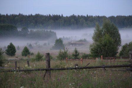 «Утро Мещёры» Автор фото:  Ирина Пискунова