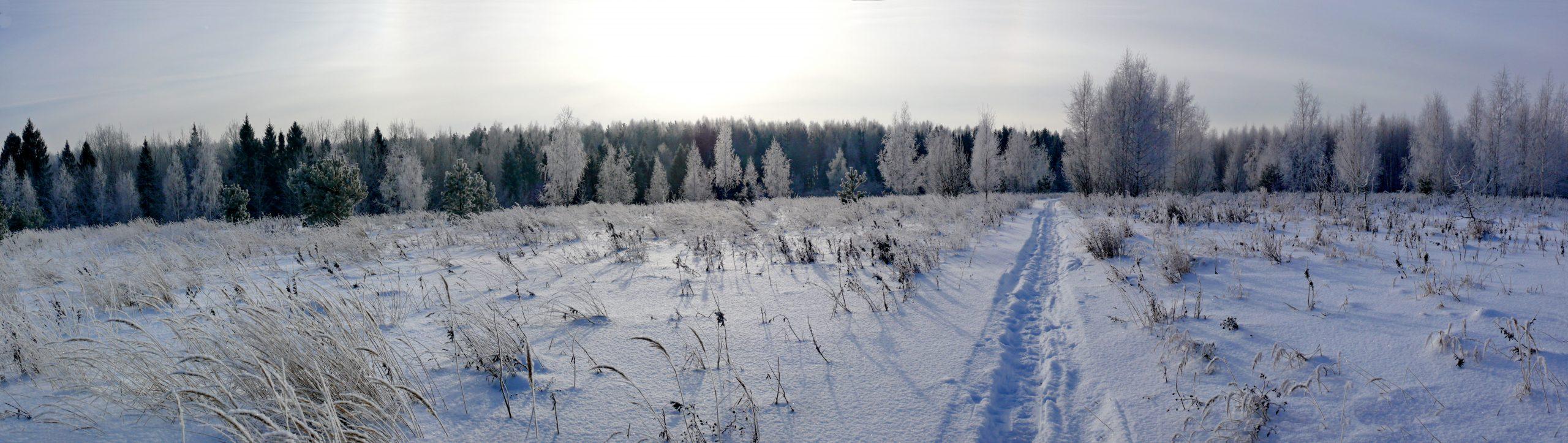 «Зима» Автор фото: Анатолий Борисов