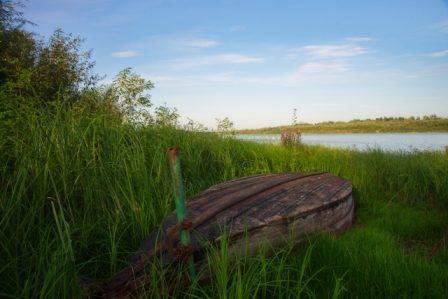 Заказник «Окский Береговой» Автор фото: Кулишов Олег
